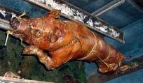 Pig roasted over a spit (puerco asado).